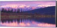 Alaska Denali National Park Fine-Art Print