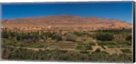 Tinghir Oasis, Province De Tinghir, Souss-Massa-Draa, Morocco Fine-Art Print