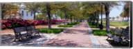 Waterfront Park in Charleston, SC Fine-Art Print