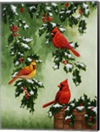 Cardinals Hollies with Snow Fine-Art Print