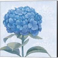 Blue Hydrangea III Crop Fine-Art Print