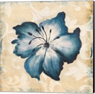 Blue Flower Fine-Art Print