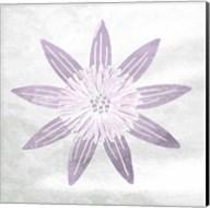 Soft Texture Flower Fine-Art Print