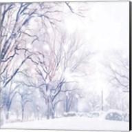 Snowday Fine-Art Print