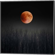 Blood Moon Fine-Art Print