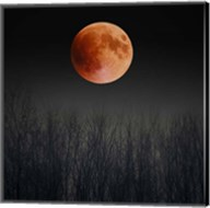 Blood Moon Fine-Art Print