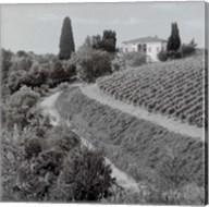 Tuscany V Fine-Art Print