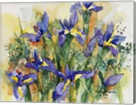 Indelible Irises Fine-Art Print