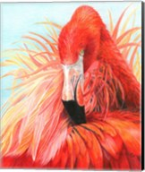 Red Flamingo Fine-Art Print