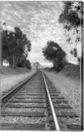 On The Right Track Fine-Art Print
