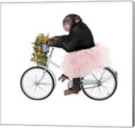Monkeys Riding Bikes #1 Fine-Art Print
