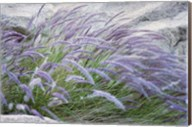 Purple Wild Grass II Fine-Art Print