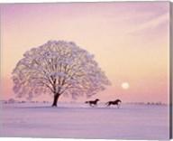 A Winter's Evening Fine-Art Print