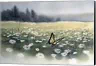 Daisy Field Fine-Art Print