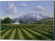 Mount Sta Helena - Napa Valley Fine-Art Print