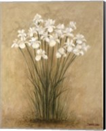 Floral F Fine-Art Print