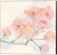 Pink Blossoms III Fine-Art Print