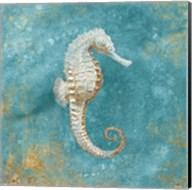Treasures from the Sea I Aqua Fine-Art Print
