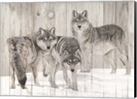 Three Grey Wolves on Wood Fine-Art Print