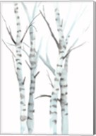 Aquarelle Birches I Fine-Art Print