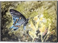 Butterfly in Nature I Fine-Art Print