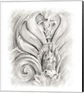 Frieze Study III Fine-Art Print