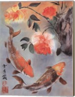 Two Koi Fine-Art Print