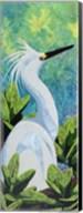 Snowy Egret Fine-Art Print
