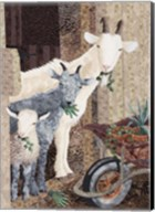 Three Goats and a Wheelbarrow Fine-Art Print