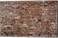 Brick Wall Splattered with White Fine-Art Print