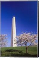 Arlington Cemetery in Spring Fine-Art Print