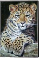 Amur Leopard Cub 2 Fine-Art Print