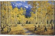 Autumn Symphony Fine-Art Print