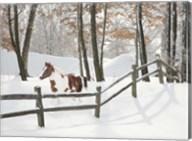 Athena in the Snow, Farmington Hills, Michigan 09 Fine-Art Print