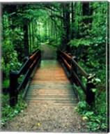 Wooden Bridge, Sundell, Michigan 90 Fine-Art Print