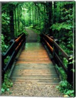 Wooden Bridge, Sundell, Michigan 90 Fine-Art Print