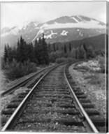 Railroad Tracks, Alaska 85 Fine-Art Print