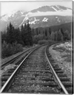 Railroad Tracks, Alaska 85 Fine-Art Print