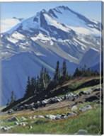 Summer Mountain Fine-Art Print