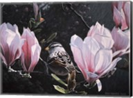 Sparrow In Magnolia Fine-Art Print