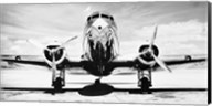 Passenger Airplane on Runway Fine-Art Print