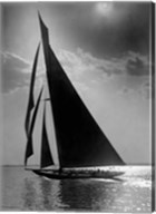 The Vanitie during the America's Cup, ca. 1900-1910 Fine-Art Print