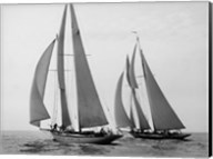 Sailboats Race during Yacht Club Cruise Fine-Art Print