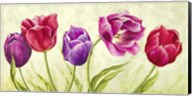Tulipani Danzanti Fine-Art Print
