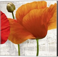 Summer Poppies II Fine-Art Print