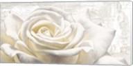 White on White Fine-Art Print