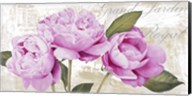 Grand Jardin Royal Fine-Art Print