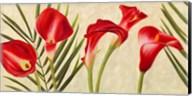 Red Callas Fine-Art Print