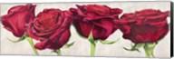 Rose Romantiche Fine-Art Print
