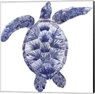Marine Turtle II Fine-Art Print